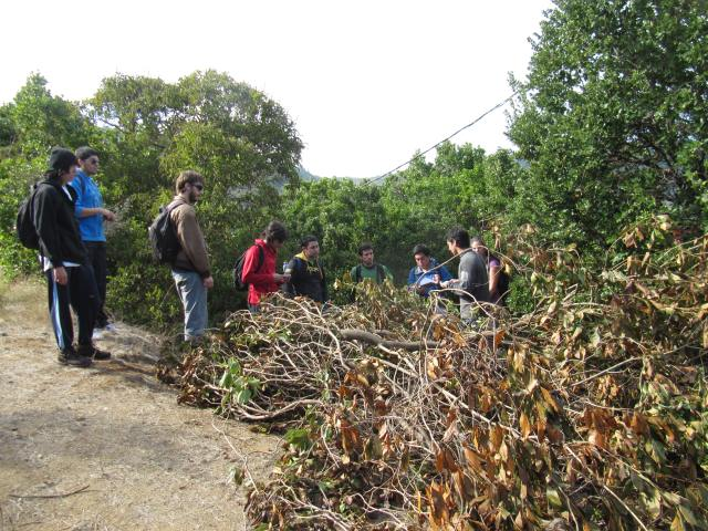 Alumnos observando técnicas de manejo de especies exóticas en Parque El Boldo