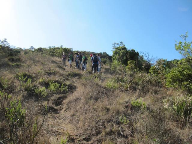 Estudiantes ascendiendo Cerro Alto El Boldo, observando vegetación del matorral esclerófilo