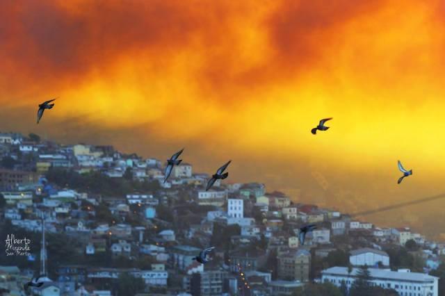 Valparaíso en llamas, 2014